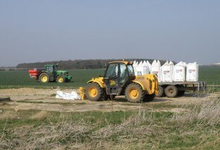 Urea fertiliser being applied to crops. (Image source: Michael Trolove)