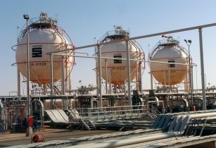 Sonatrach discoveries
